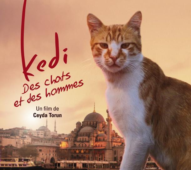 Une superbe aventure au cinéma le 27 décembre !