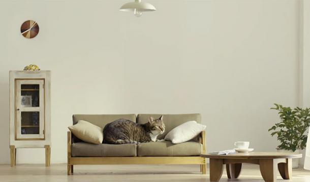 Des mini meubles pour chats