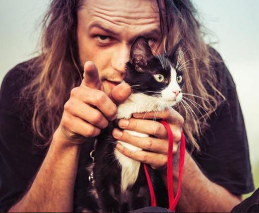 Une aventure avec un chat des rues